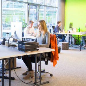 Startplatz: Workshop zu Grundsteinen der Organisationskultur